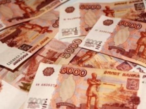 В Мордовии директор сельхозпредприятия обманул государство на 600 тыс рублей