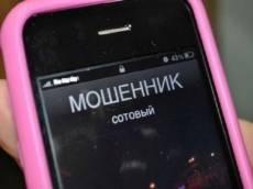 Мошенники заработали на чувствах молодой мамы из Саранска