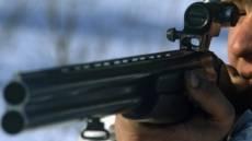 В Мордовии охотник вместо лисы убил лося