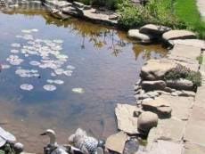 В Мордовии в самодельном бассейне утонул годовалый малыш