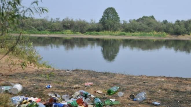 На берегах саранских водоёмов разгребут мусор