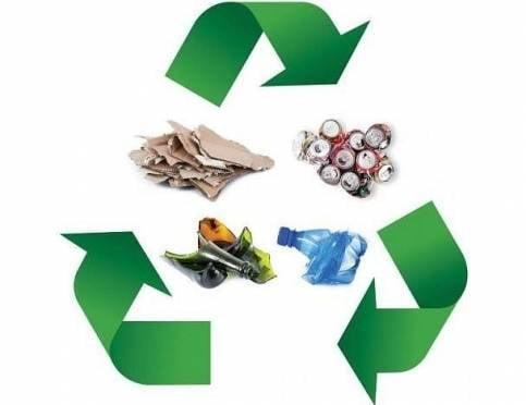 Гринпис России оценил усилия Саранска по внедрению раздельного сбора отходов