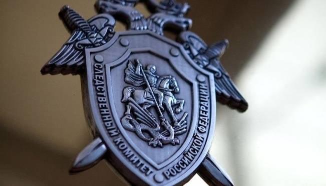 В мордовском СКР прокомментировали обнаружение скелета мужчины в Новлее