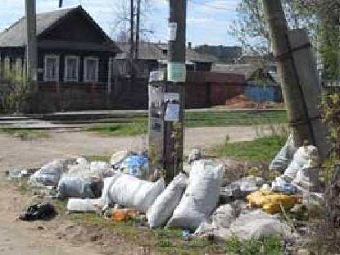 Нарушителей чистоты в Саранске начали наказывать рублем