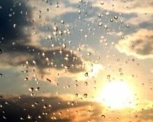 Синоптики Мордовии сегодня обещают дождь