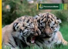 РСХБ предлагает новый пакетный продукт – вклад «Амурский тигр» плюс карта