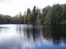 Чистота водоёмов Мордовии под контролем