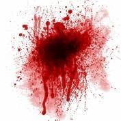 На берегу реки Сивинь произошла кровавая разборка из-за женщины