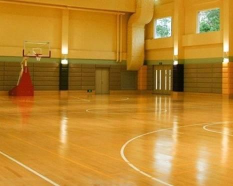 В Мордовии большинство спорткомплексов пустуют