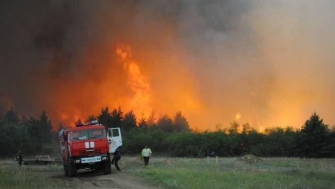 На тушение лесного пожара в Ростовской области из Саранска отправились почти 100 человек