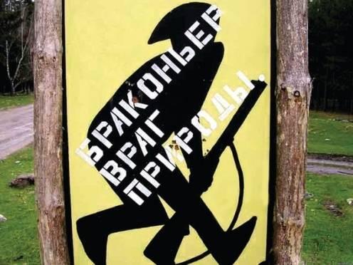 Отстрел кабана стоил жителю Мордовии 70 000 рублей, ружья и снегохода