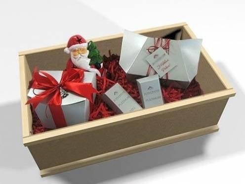 Новогодние посылки до жителей Мордовии дойдут вовремя