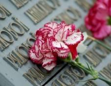 В Саранске пройдет неделя патриотической поэзии