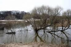 Паводок в Мордовии проходит спокойно