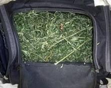 На ж/д вокзале в Рузаевке у «путешественника» нашли 400 грамм марихуаны