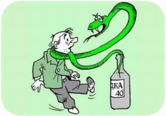 Жители Мордовии стали чаще травиться алкоголем