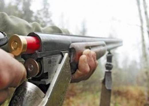 В Мордовии браконьер заплатит 380 тыс рублей за убийство лося