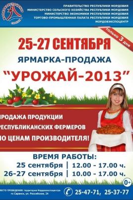 Деловая Мордовия 2013 постер
