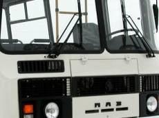 В Мордовии сбитая автобусом женщина отделалась ушибом