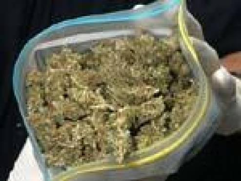У жителя Мордовии изъяли около 40 грамм марихуаны