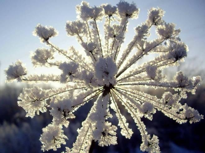 Мордовия на 40% готова к зиме