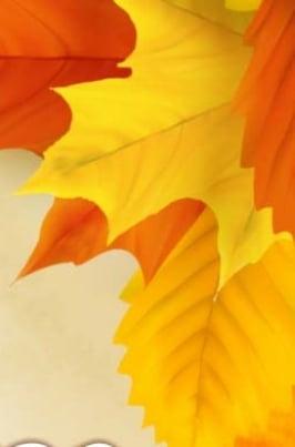 В ритме осеннего вальса постер