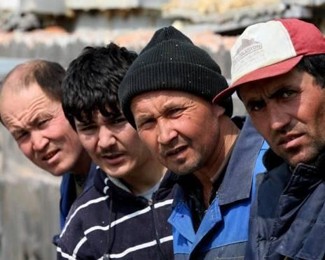 МВД Мордовии: выявление «нелагалов» стабилизирует оперативную обстановку