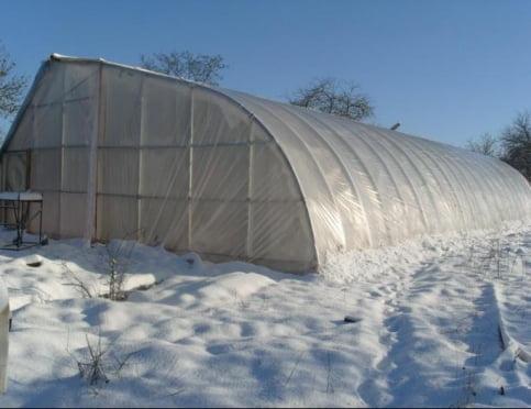 Полезные советы: как построить зимнюю теплицу