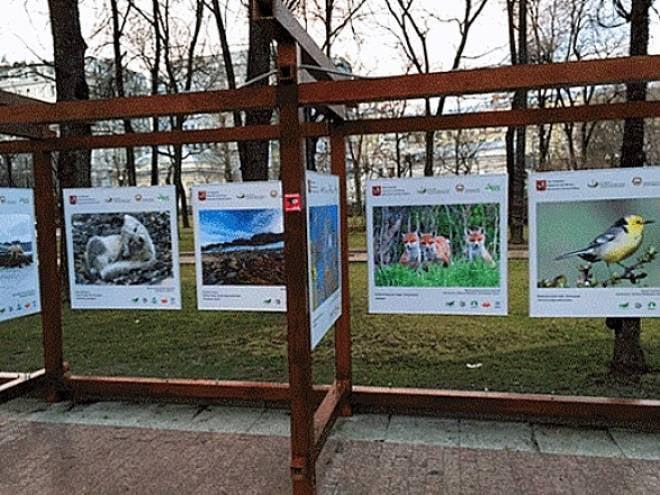 Москвичам показывают «Заповедную Мордовию»