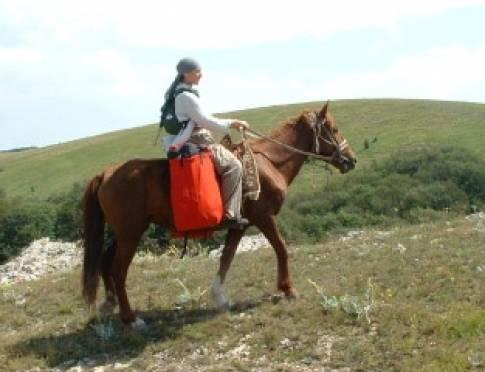 В Саранске может пройти чемпионат Приволжья по конному туризму
