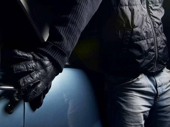 В Мордовии задержали троих нелогичных автоворов
