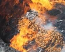 Наркополицейские Мордовии сожгли наркотиков на 60 миллионов рублей