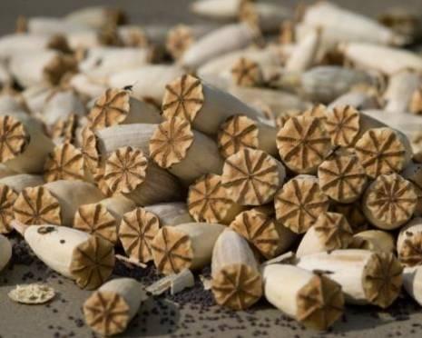 Житель Мордовии хранил дома 400 грамм марихуаны, маковой соломы и гашиша