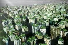 Саранск сделают зеленее