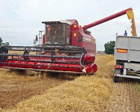В Мордовии уборка зерновых завершена почти наполовину