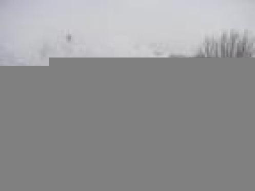 Минувшей ночью в пригороде Саранска в пожаре погибла пенсионерка с четырьмя внуками в возрасте от 4 до 20 лет