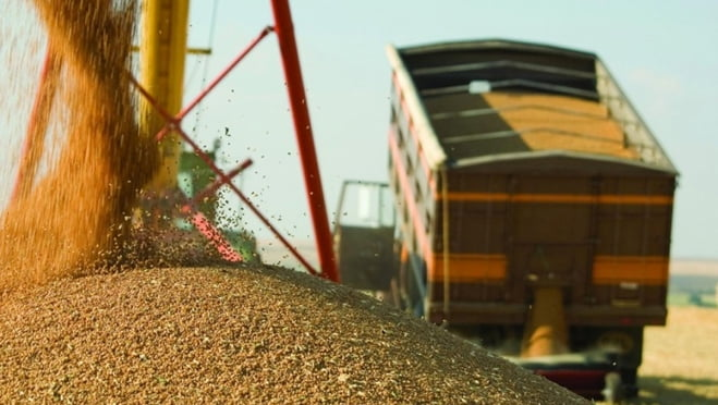 Аграрии Мордовии приближаются к намеченным цифрам по сбору зерновых