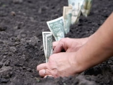 На поддержку АПК Мордовии направят более 870 млн. рублей