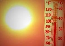 МЧС: в Мордовии воцарилась аномальная жара