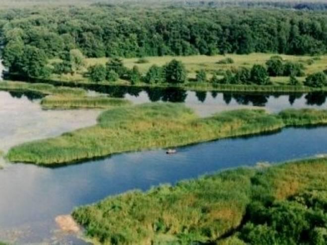 В Мордовии Национальный парк «Смольный» под угрозой уничтожения
