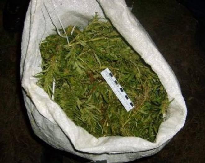 У жителя Мордовии нашли больше 1,5 килограммов марихуаны
