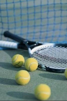 Чемпионат Мордовии по теннису постер