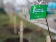 В Пушкинском парке Саранска появилась Кленовая Аллея