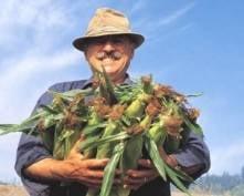 Фермеров Мордовии поддержат рублем
