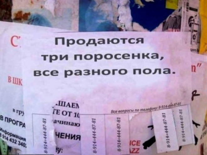 В Саранске наведут порядок с рекламой