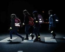 В Мордовии намерены «засветить» каждого школьника