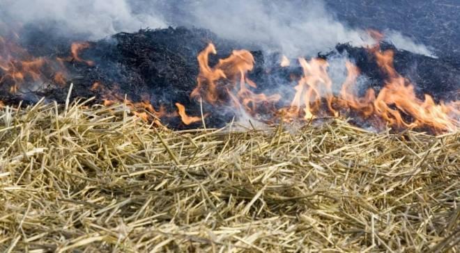 В шести районах Мордовии ожидается высокий класс пожароопасности