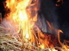 В Мордовии сгорело более 6 тонн сена