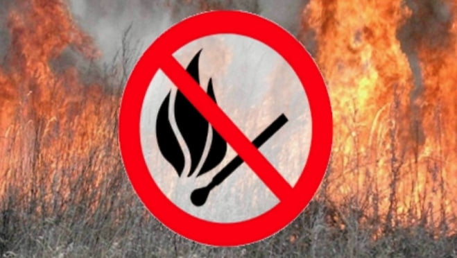 В шести районах Мордовии — чрезвычайная пожарная опасность