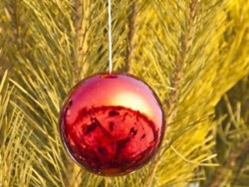 В райцентре Мордовии объявили план «Перехват» для поимки похитителя новогодней ёлки